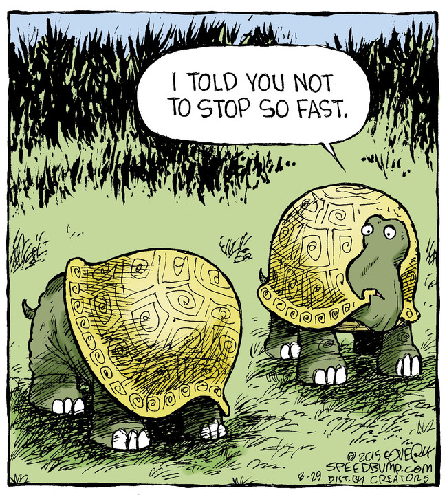 Speed Bump for August 29, 2015