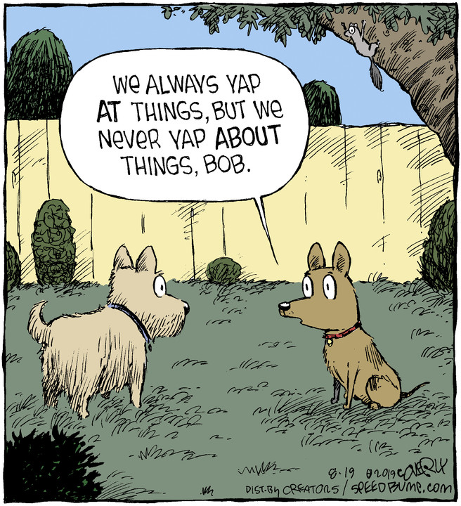 Speed Bump for Aug 19, 2019