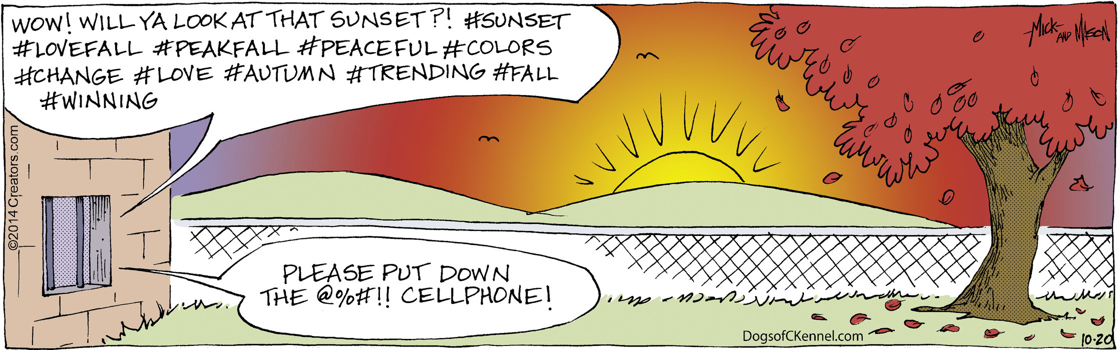Dogs of C-Kennel for Oct 20, 2014