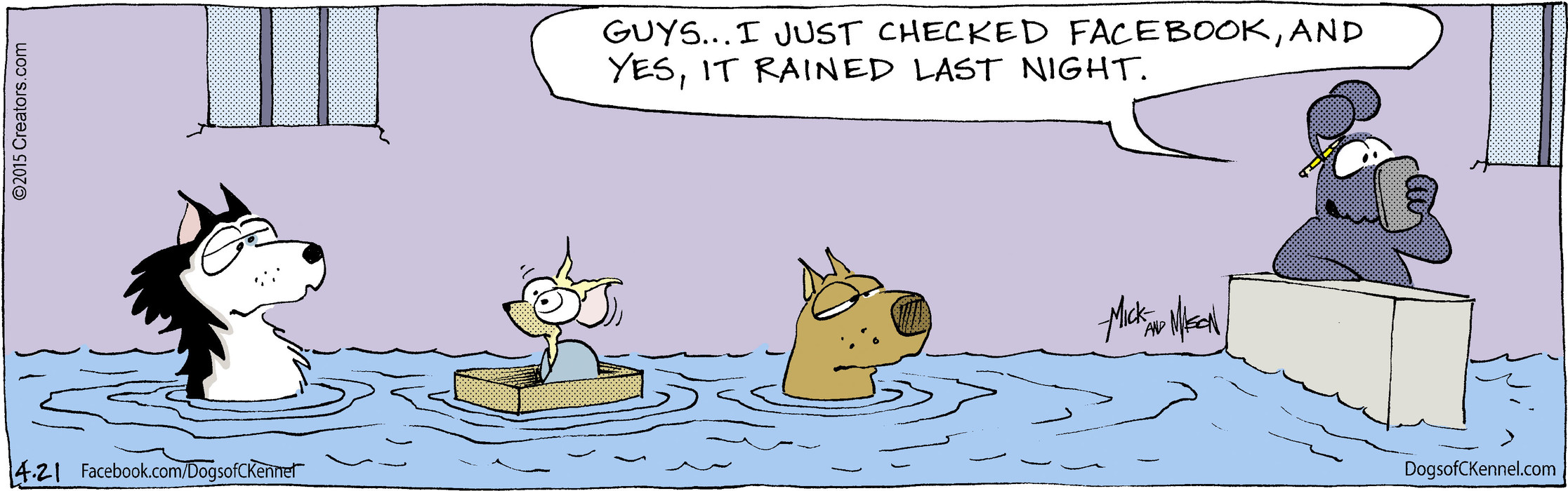 Dogs of C-Kennel for Apr 21, 2015