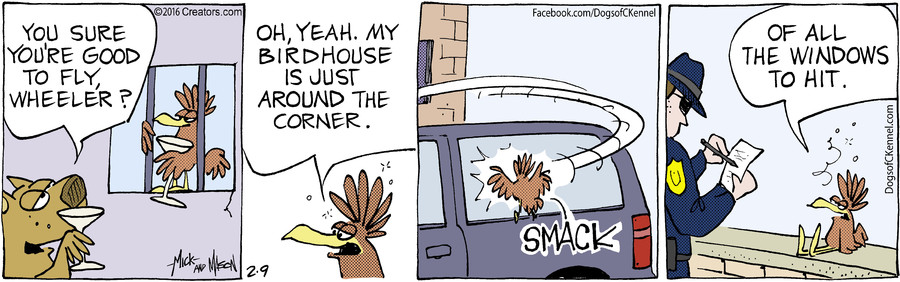 Dogs of C-Kennel for Feb 09, 2016