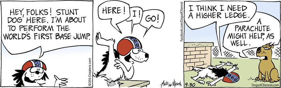Dogs of C-Kennel for Sep 30, 2016