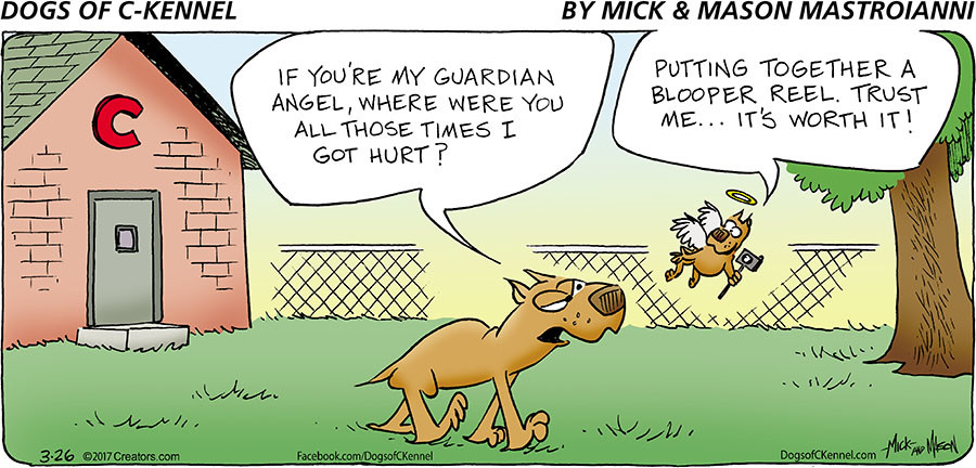 Dogs of C-Kennel for Mar 26, 2017