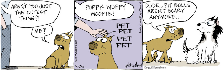 Dogs of C-Kennel for Sep 25, 2017