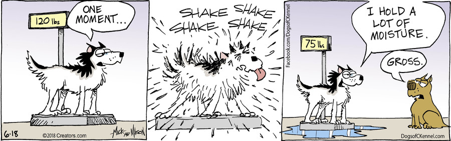 Dogs of C-Kennel for Jun 18, 2018