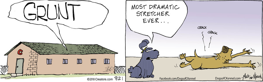 Dogs of C-Kennel for Aug 21, 2018
