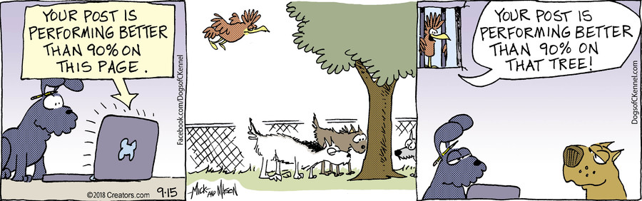Dogs of C-Kennel for 09/15/2018