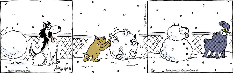 Dogs of C-Kennel for Jan 16, 2019