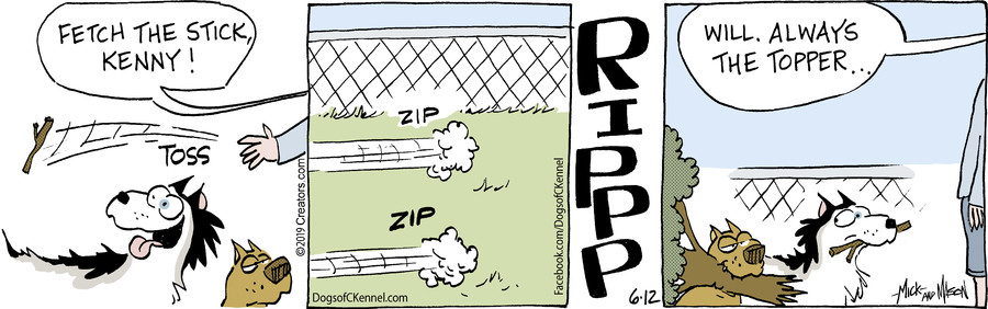 Dogs of C-Kennel for Jun 12, 2019