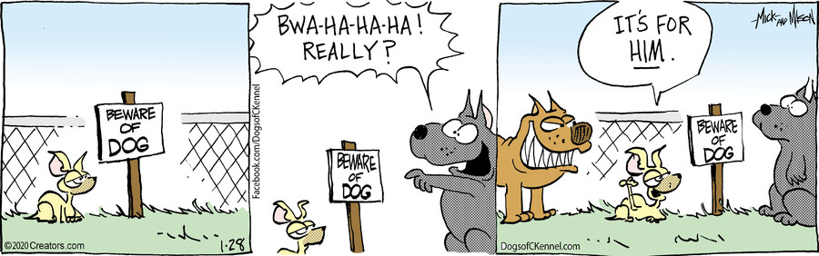 Dogs of C-Kennel for Jan 28, 2020
