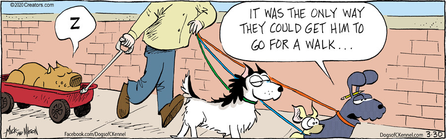 Dogs of C-Kennel for Mar 30, 2020