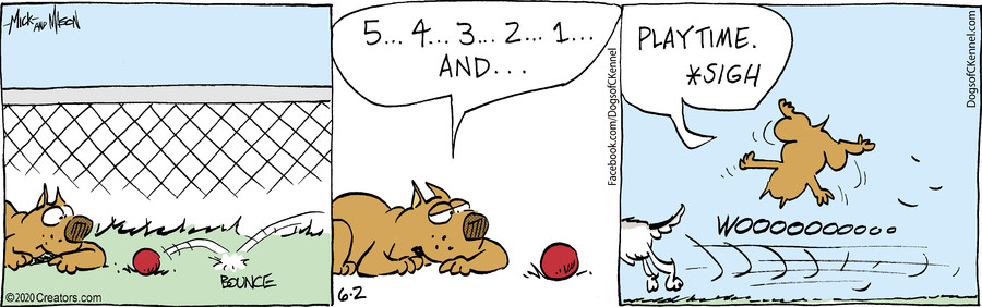 Dogs of C-Kennel for June 2, 2020