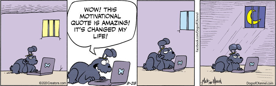 Dogs of C-Kennel for Sep 28, 2020
