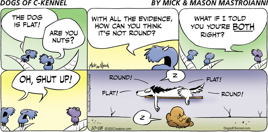 Dogs of C-Kennel for 10/18/2020