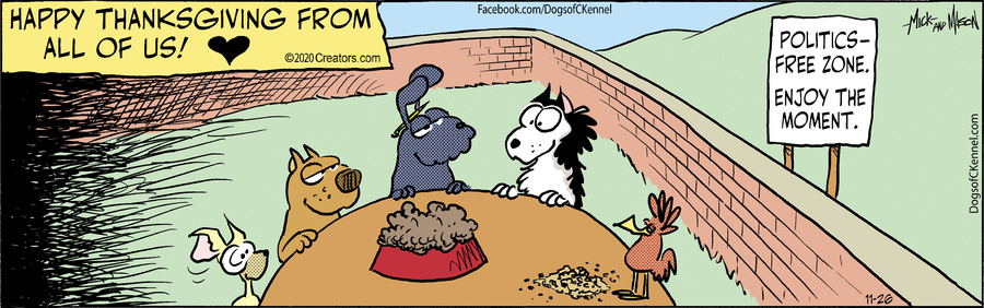Dogs of C-Kennel for Nov 26, 2020