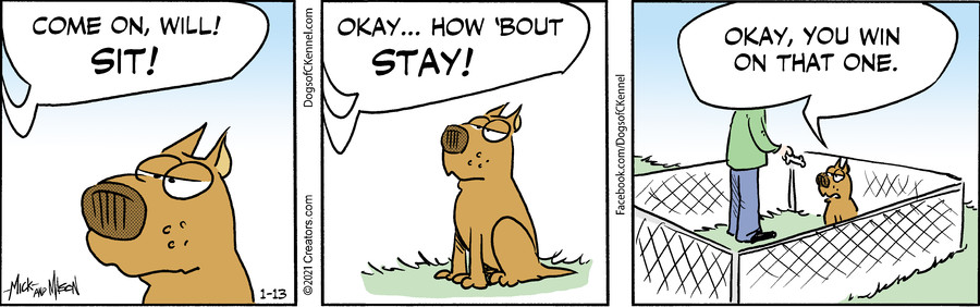 Dogs of C-Kennel for Jan 13, 2021