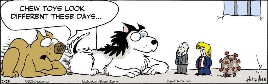 Dogs of C-Kennel for 02/23/2021