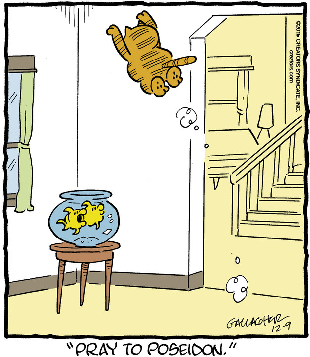 Heathcliff for Dec 09, 2016