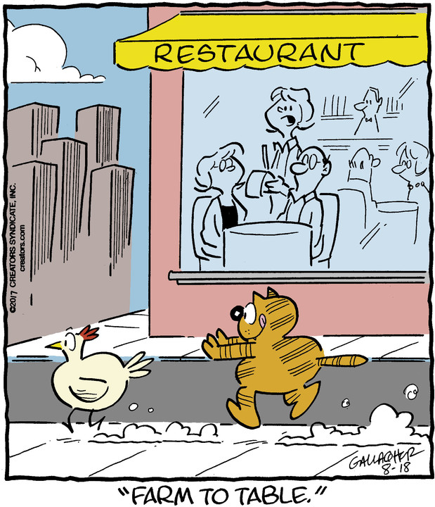 Heathcliff for Aug 18, 2017