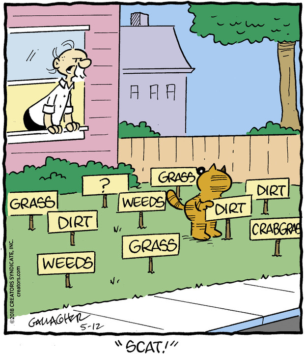 Heathcliff for May 12, 2018