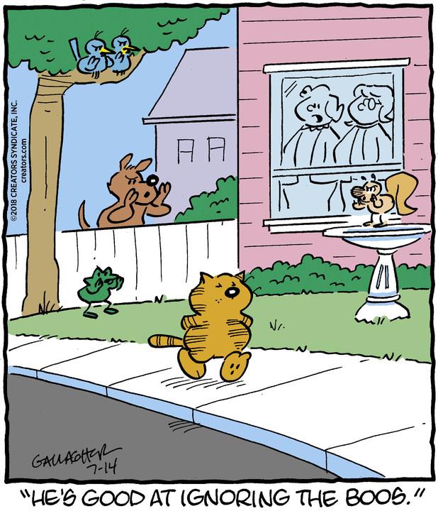 Heathcliff for Jul 14, 2018