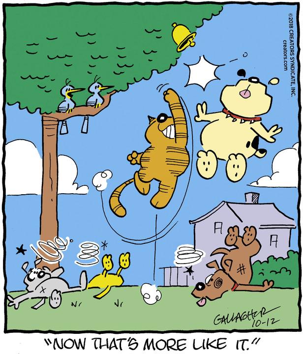 Heathcliff for Oct 12, 2018
