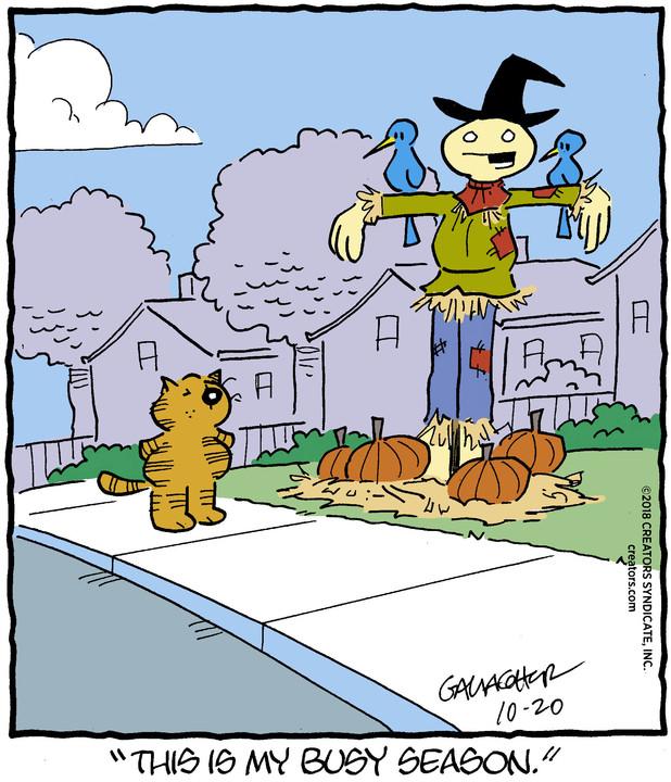 Heathcliff for Oct 20, 2018