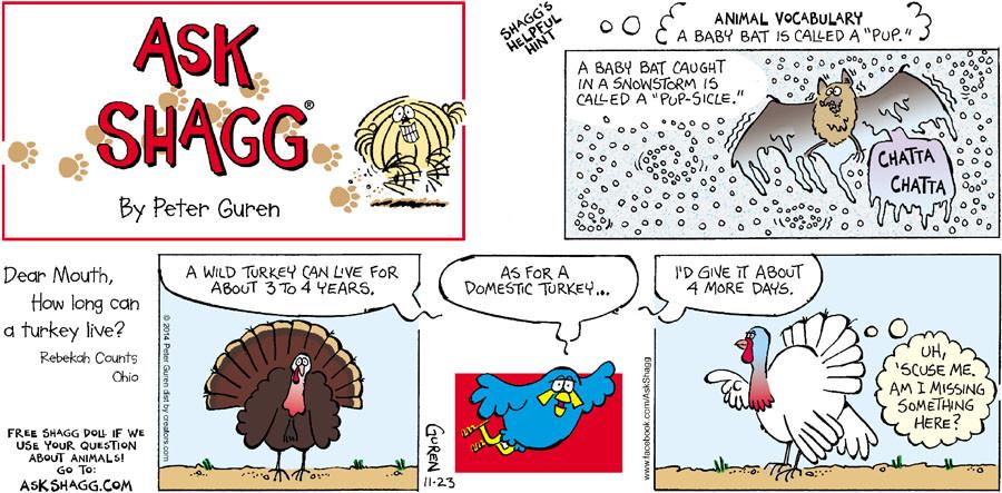 Ask Shagg for Nov 23, 2014