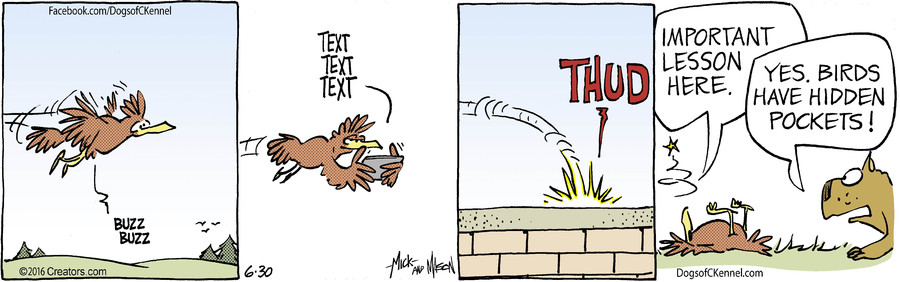 Dogs of C-Kennel for Jun 30, 2016