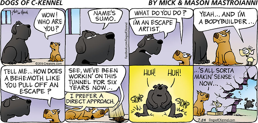 Dogs of C-Kennel for Jul 24, 2016