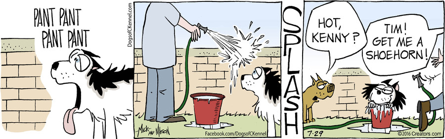 Dogs of C-Kennel for Jul 29, 2016