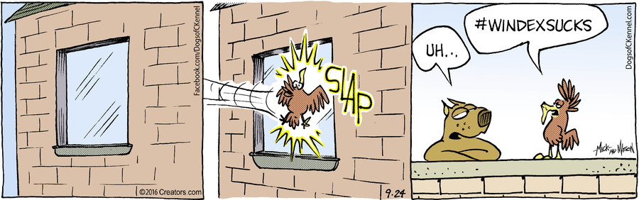 Dogs of C-Kennel for Sep 24, 2016