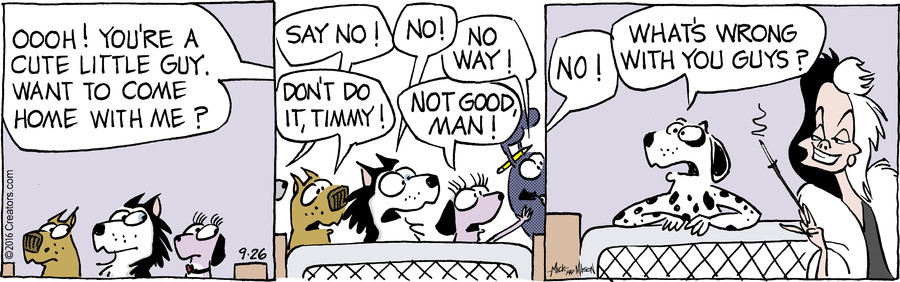 Dogs of C-Kennel for Sep 26, 2016