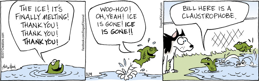 Dogs of C-Kennel for Mar 29, 2017