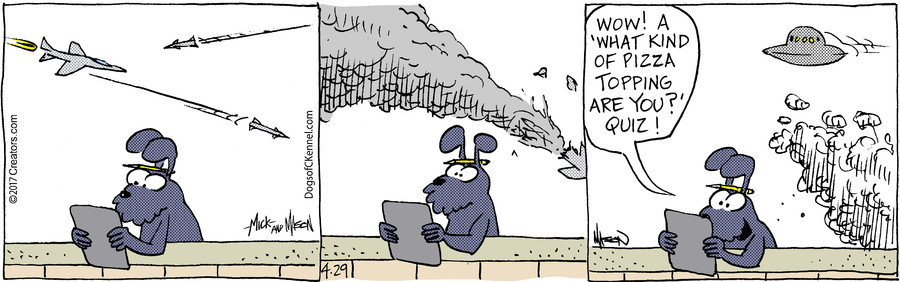 Dogs of C-Kennel for Apr 29, 2017