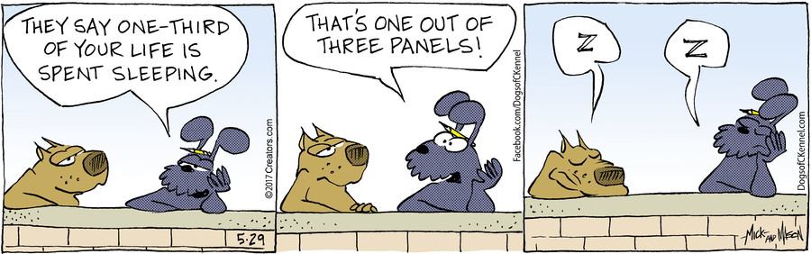 Dogs of C-Kennel for May 29, 2017
