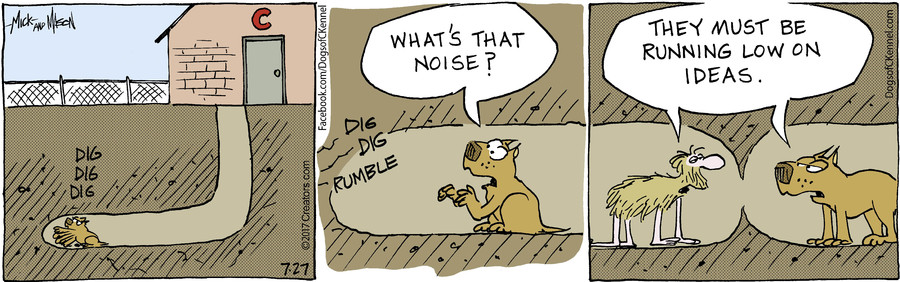 Dogs of C-Kennel for Jul 27, 2017