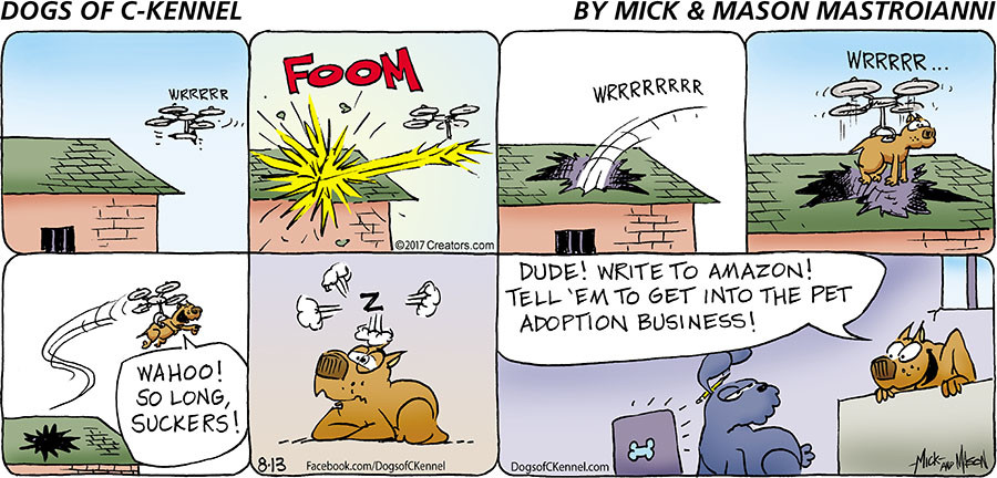 Dogs of C-Kennel for Aug 13, 2017