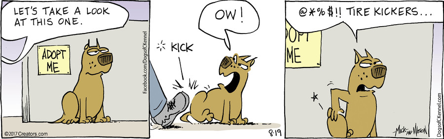 Dogs of C-Kennel for Aug 19, 2017
