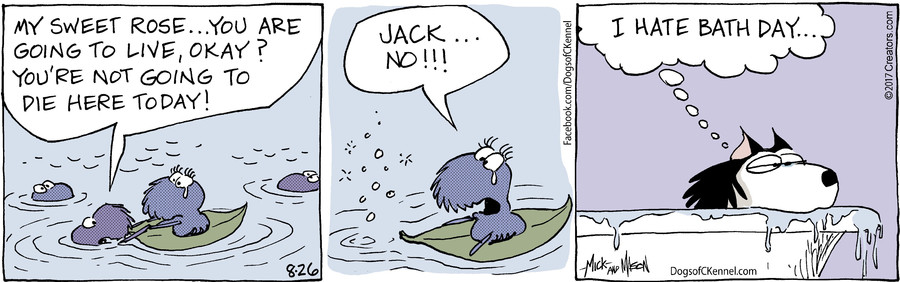 Dogs of C-Kennel for Aug 26, 2017