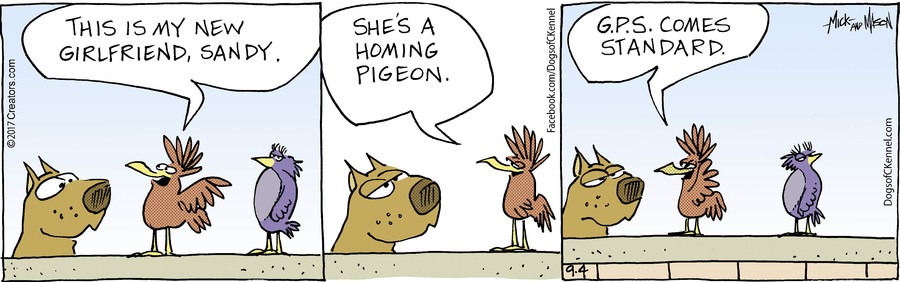 Dogs of C-Kennel for Sep 04, 2017