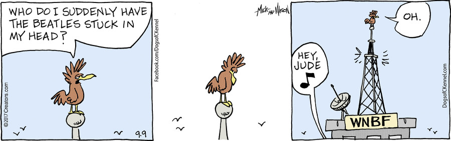 Dogs of C-Kennel for Sep 09, 2017
