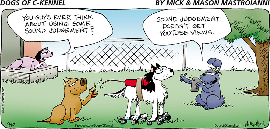 Dogs of C-Kennel for Sep 10, 2017