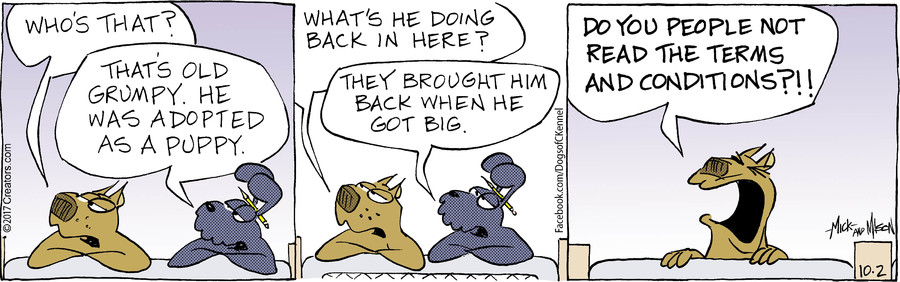 Dogs of C-Kennel for Oct 02, 2017