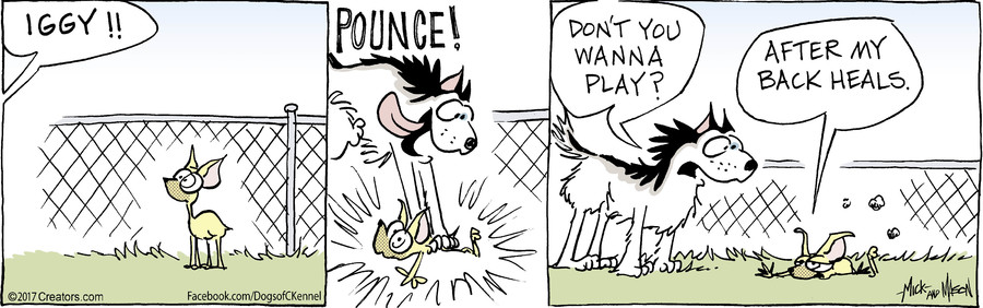 Dogs of C-Kennel for Oct 07, 2017