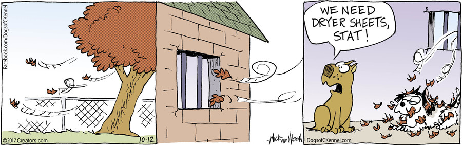 Dogs of C-Kennel for Oct 12, 2017