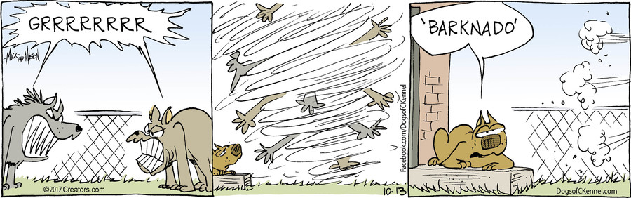 Dogs of C-Kennel for Oct 13, 2017