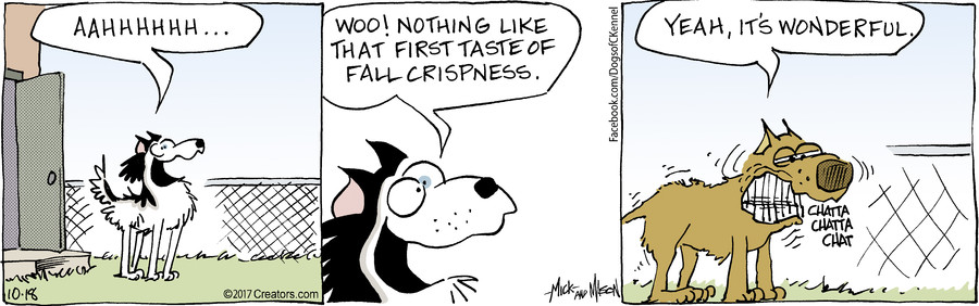 Dogs of C-Kennel for Oct 18, 2017