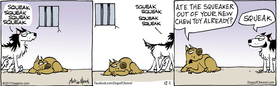 Dogs of C-Kennel for Dec 01, 2017