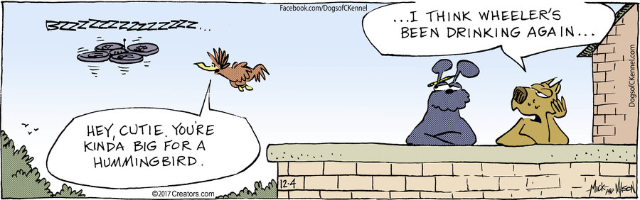 Dogs of C-Kennel for Dec 04, 2017